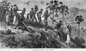 slavery 3